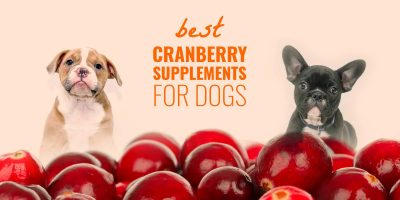 best cranberry supplements for dogs