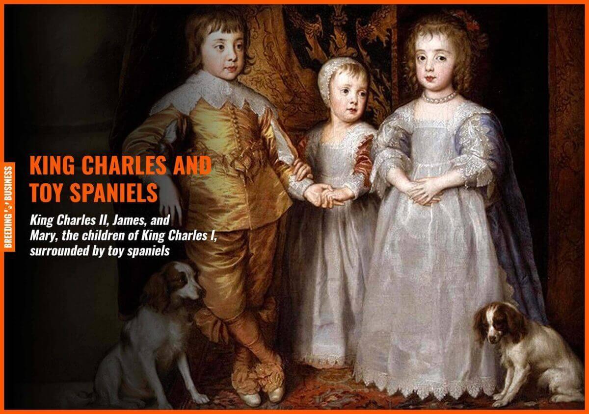 cavalier king charles spaniels history