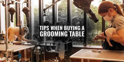 tips buying dog grooming table
