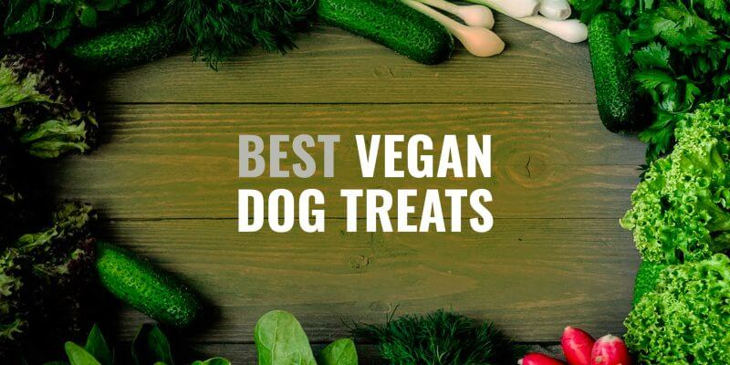 10 Best Vegan Dog Treats – Chews, Biscuits & Vegan Snacks