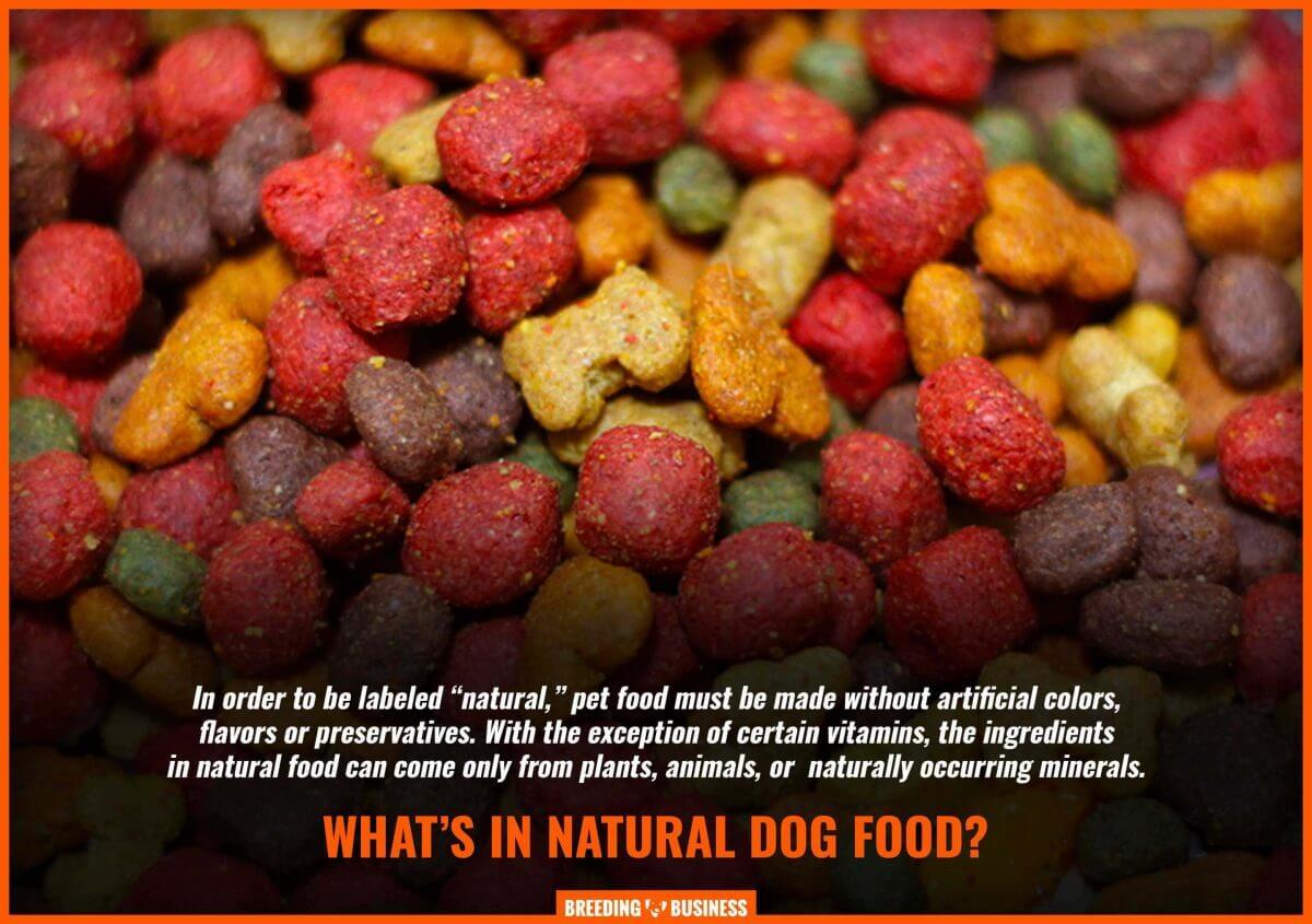 definition of natural dog food