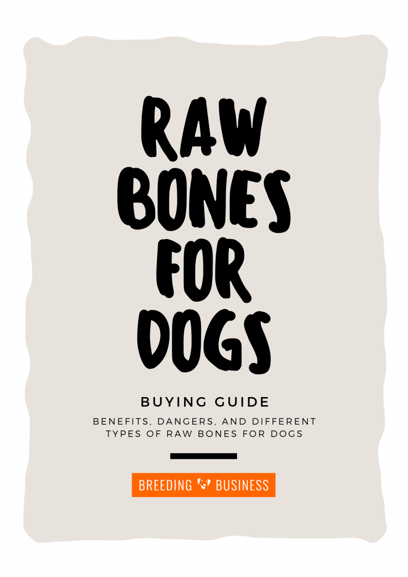 raw bones for dogs poster