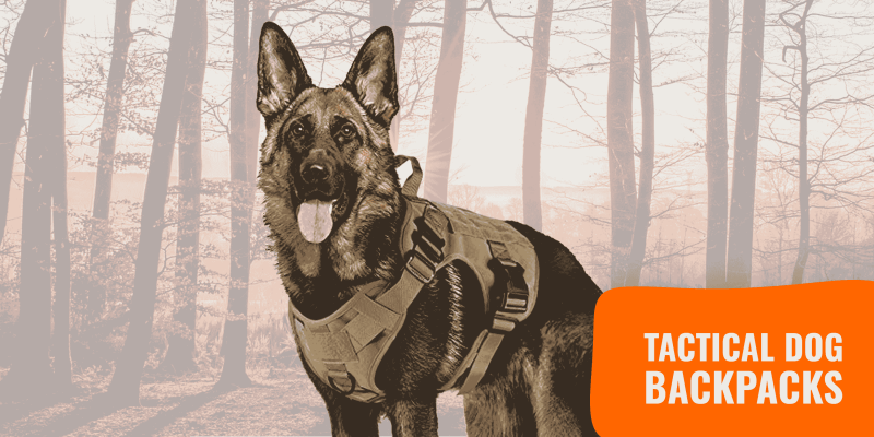 9 Best Tactical Dog Backpacks – with Buying Guide