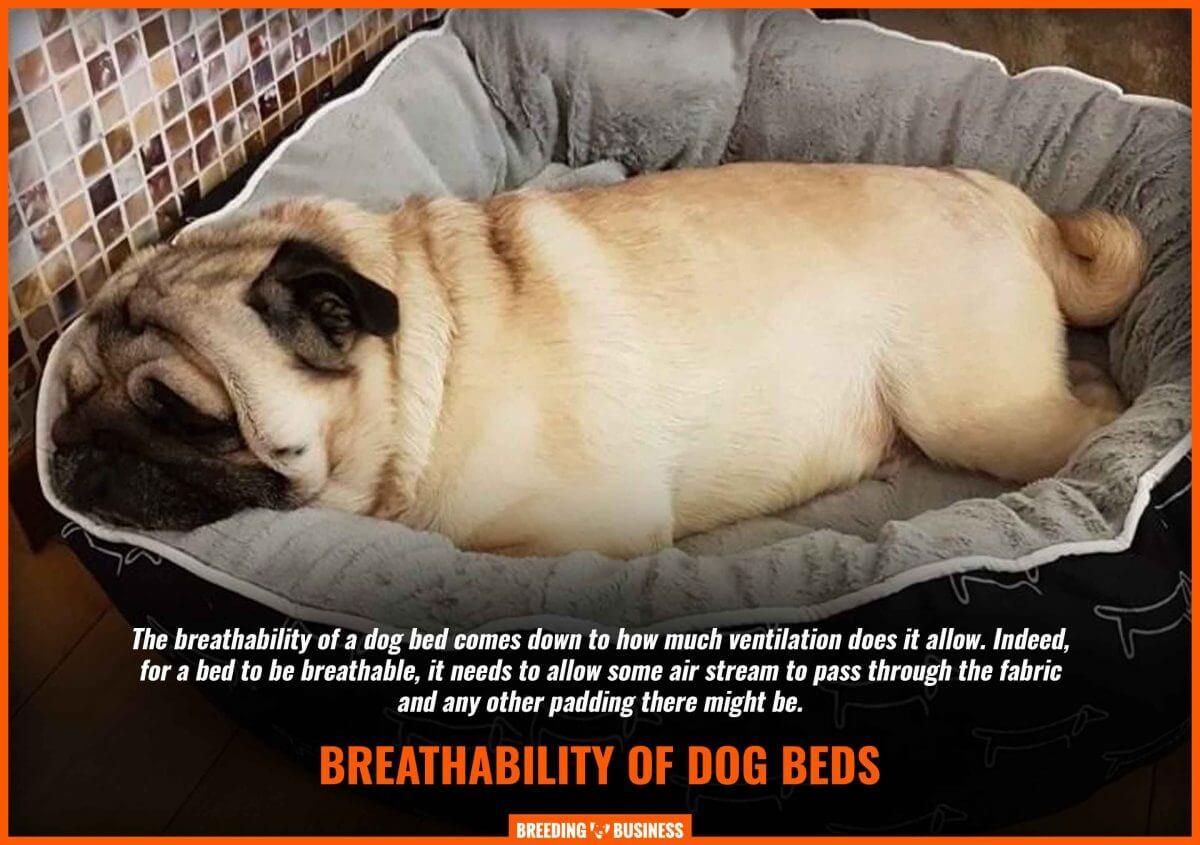 breathability dog beds