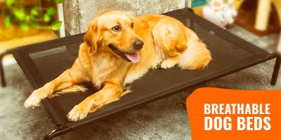 best breathable dog beds