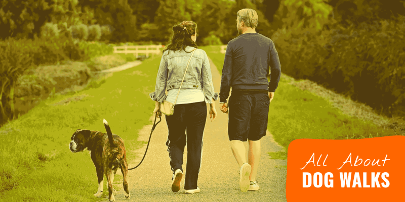 dog walks guide