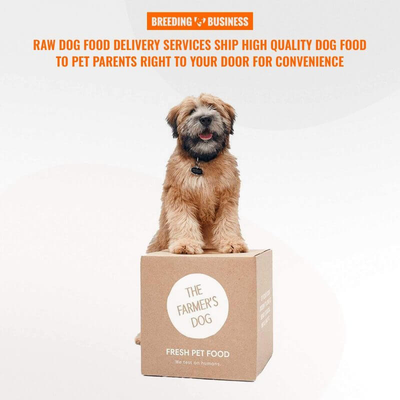 price and convenience of raw dog food delivery services