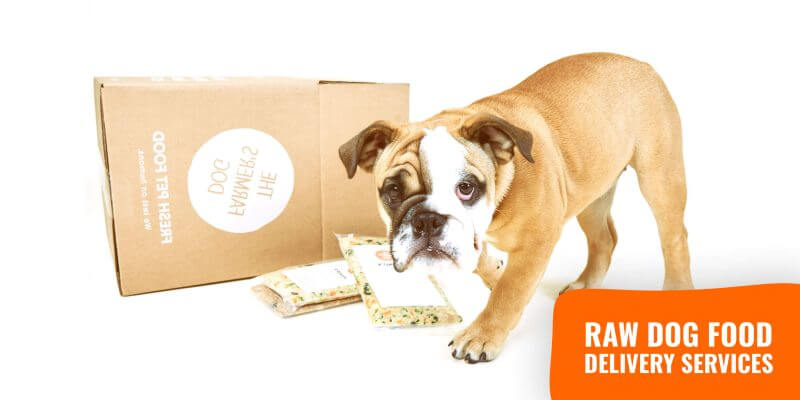 Raw Dog Food Delivery – Services and Cost