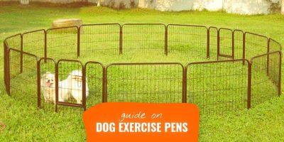 best dog exercise pens