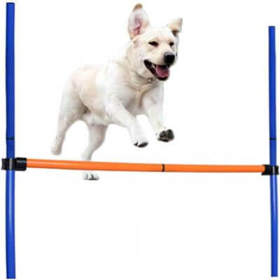 dog jump bars