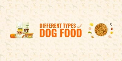 types of dog food