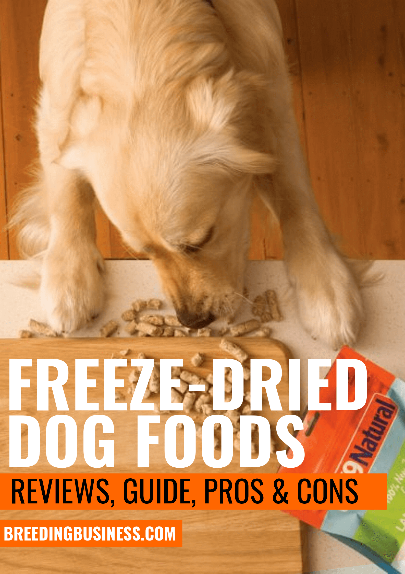 Top Freeze-Dried Dog Foods – Reviews, Guide, Pros & Cons