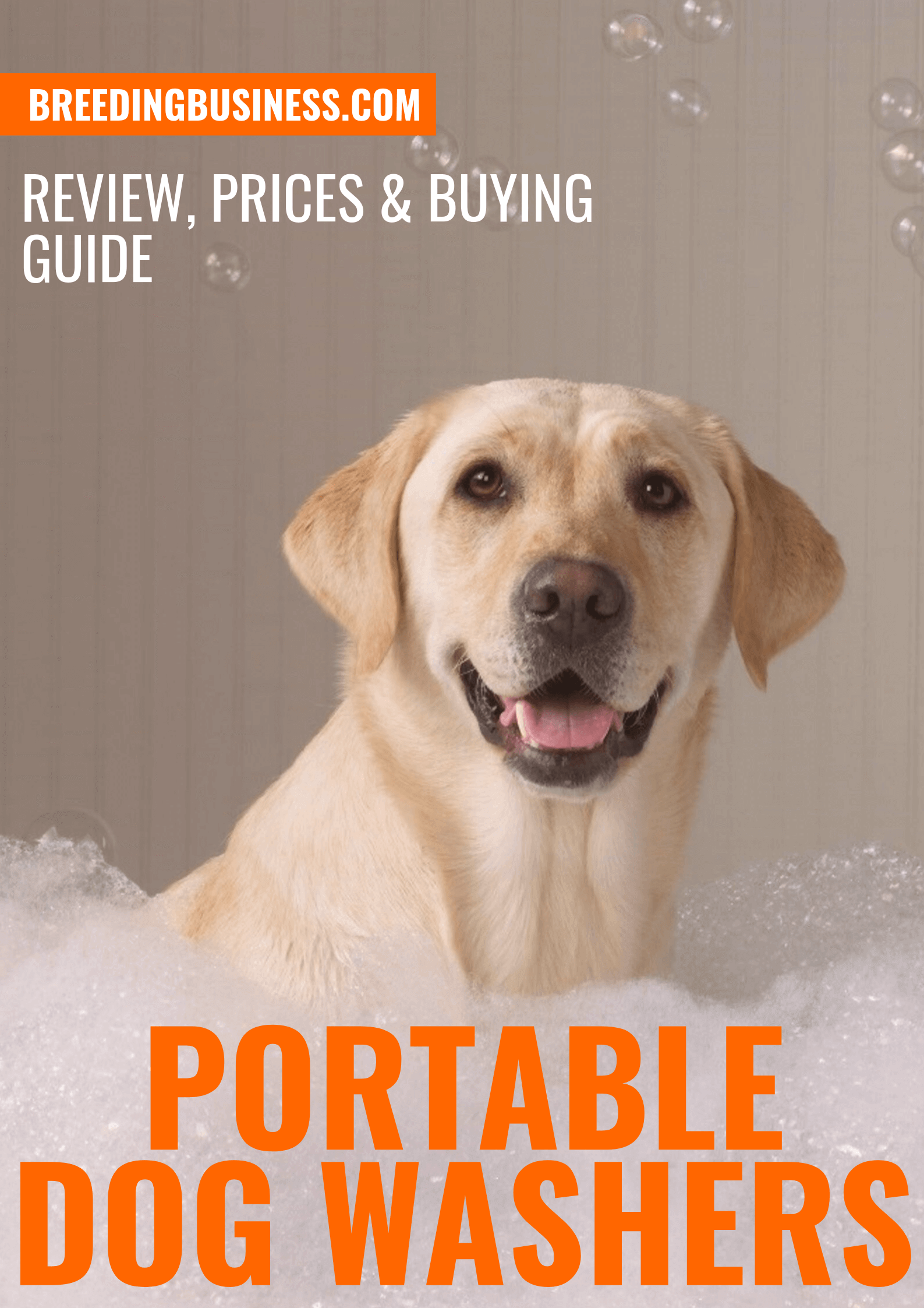 Top 5 Best Portable Dog Washers — Reviews, Prices & Systems