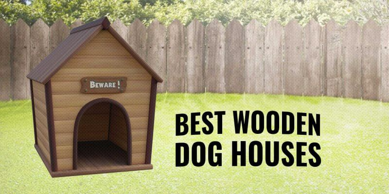 10 Best Wooden Dog Houses – Buying Guide, Reviews & Tips