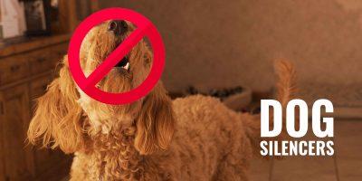 dog silencers