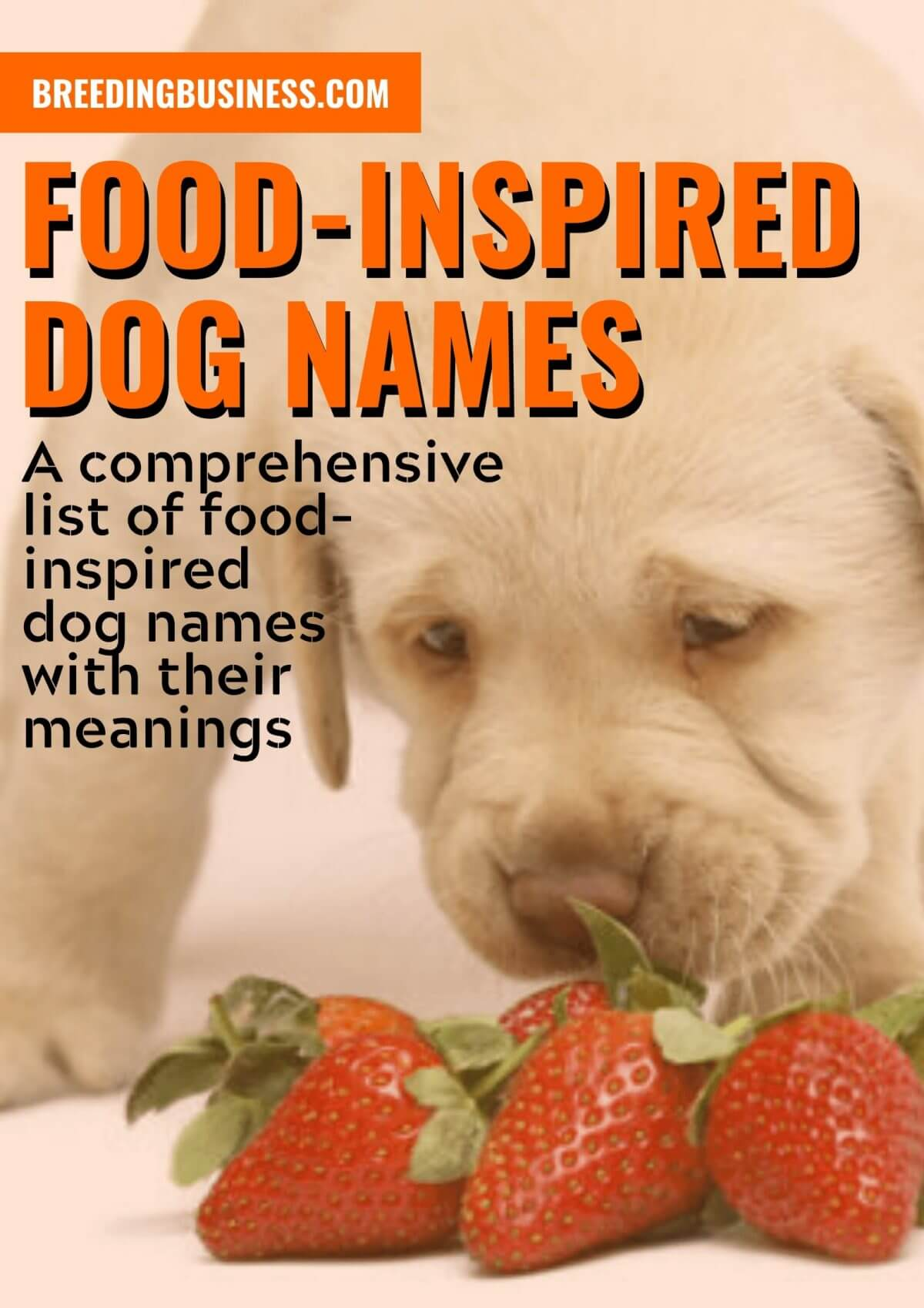 Food-Inspired Dog Names
