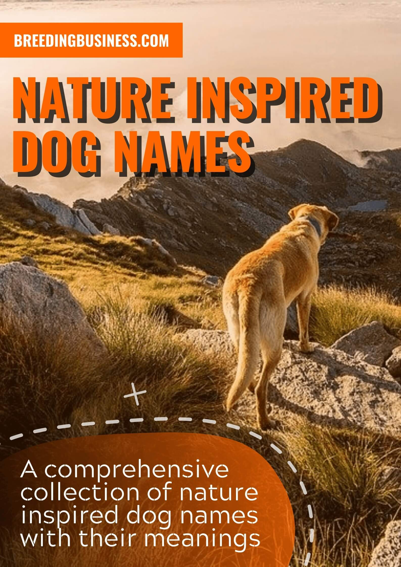 Nature-Inspired Dog Names