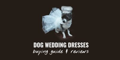 Dog Wedding Dresses – Buying Guide, Prices & Top 10