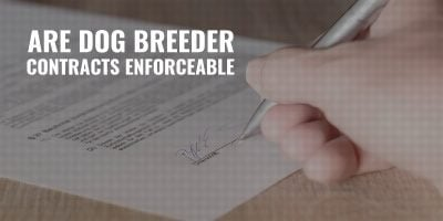 are dog breeding contracts enforceable