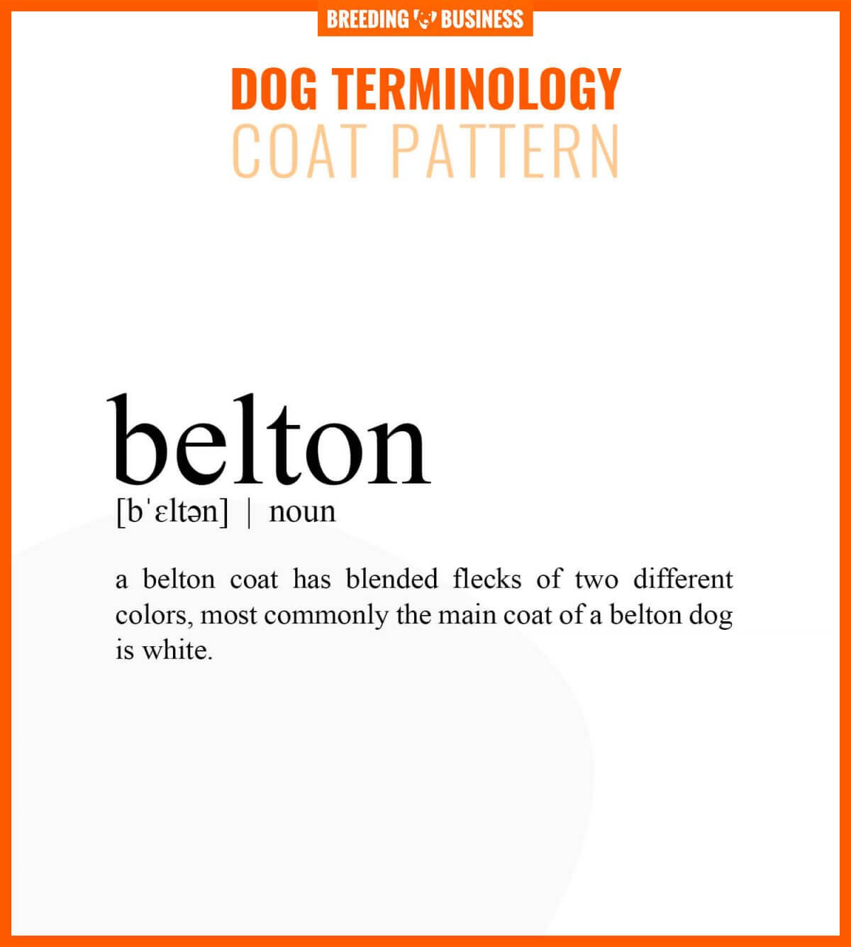 belton dog coat pattern