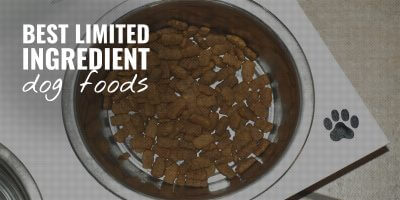 7 Best Limited Ingredient Dog Foods – Benefits, Allergies, Reviews & FAQs