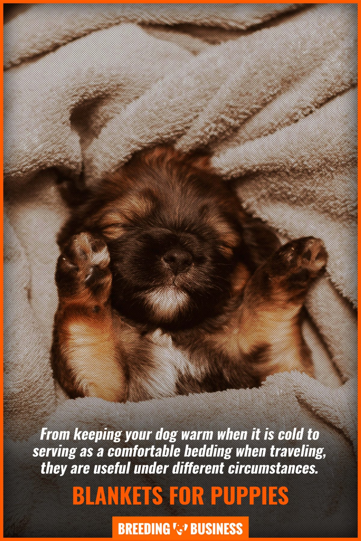 blankets for puppies