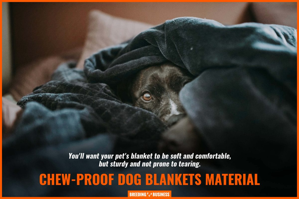 chew proof dog blankets material