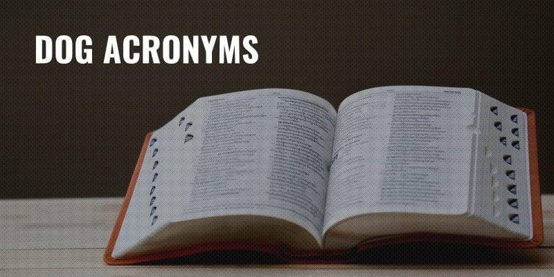 dog acronyms
