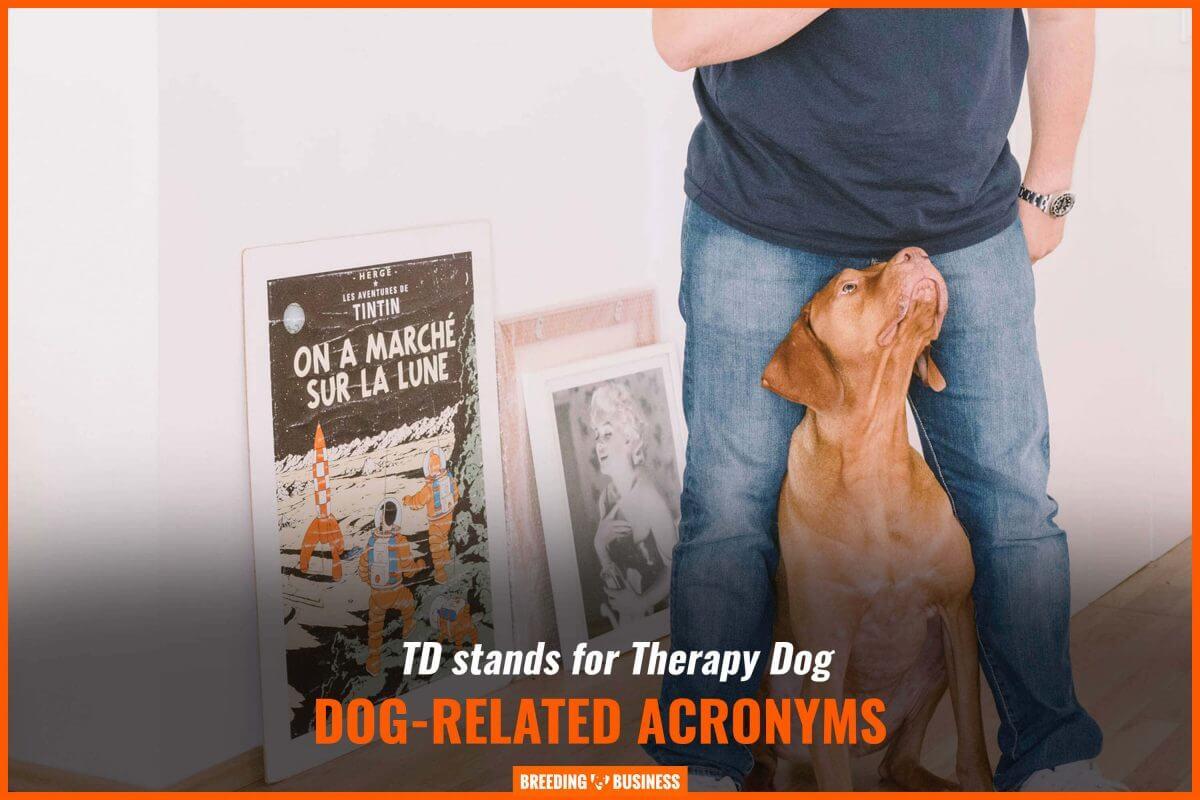 dog related acronyms