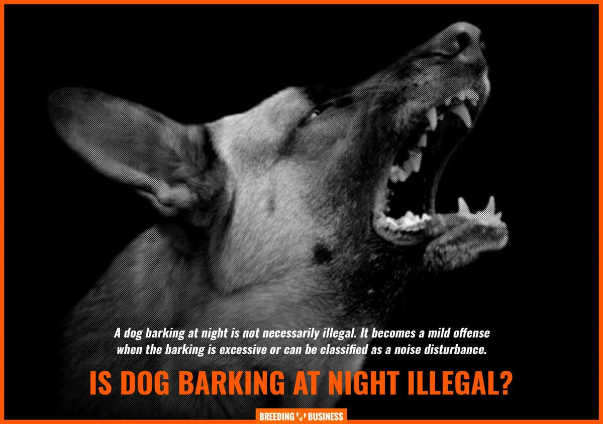 legality of dog barking at night
