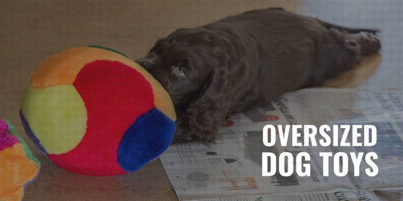 over sized dog toys