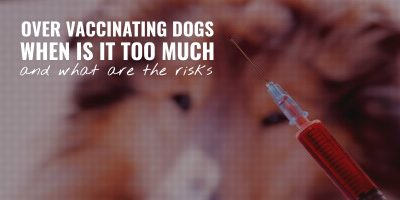 over vaccinating dogs