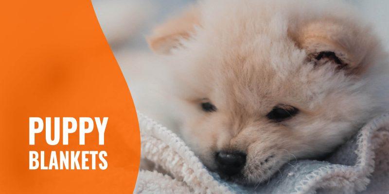 puppy blankets