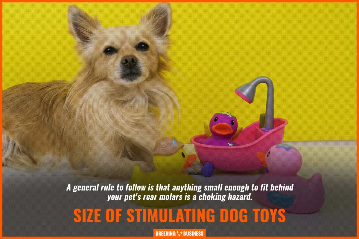 size of stimulating dog toys
