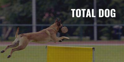 total dog