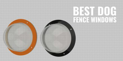 Best Dog Fence Windows