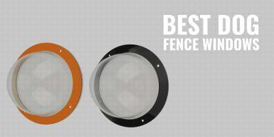 Best Dog Fence Windows