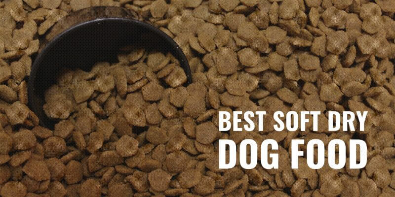 Best Soft Dry Dog Food
