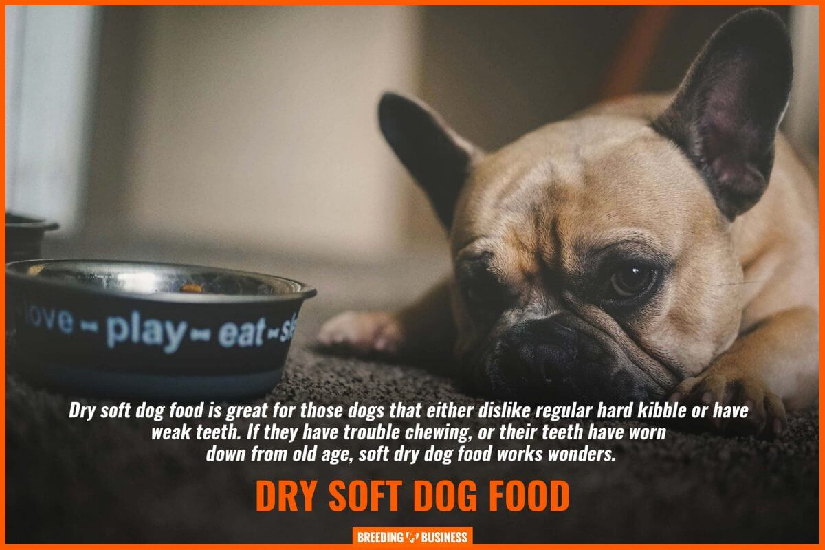 chewing on softened dry dog food