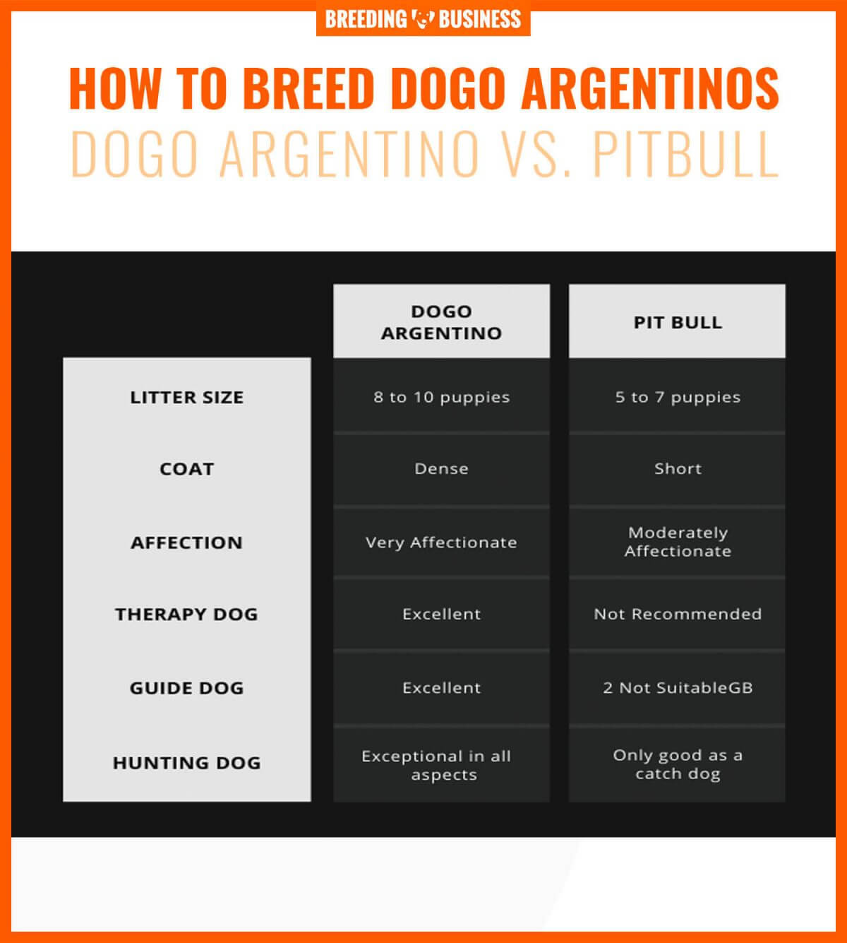 How To Breed Dogo Argentinos – Health concerns, Litter ...
