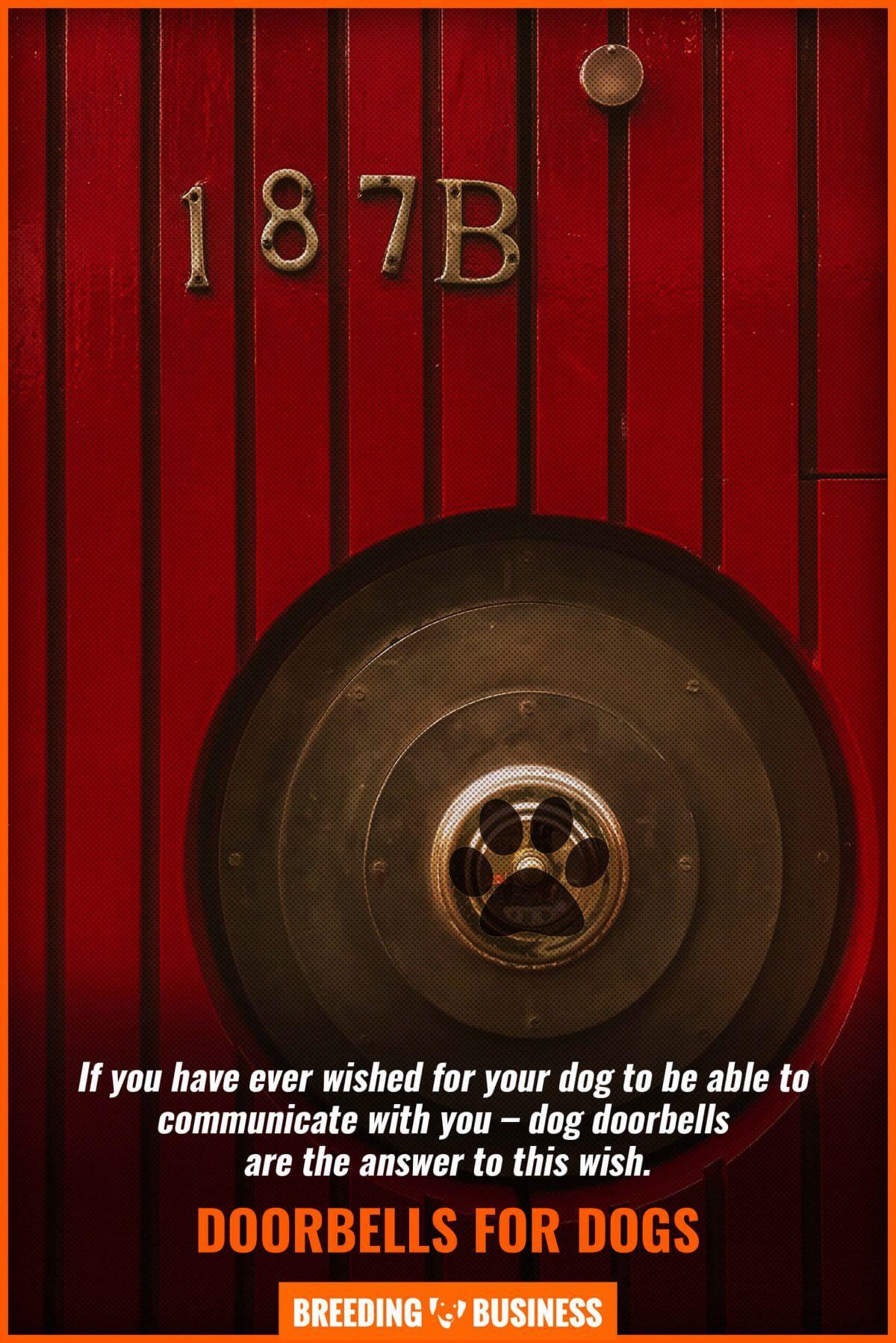 doorbells for dogs