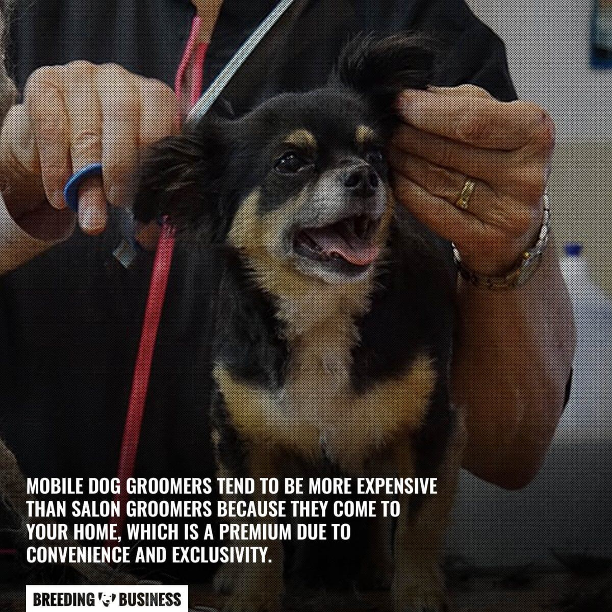 price of mobile dog groomers