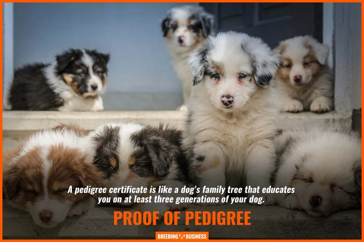 proof of pedigree