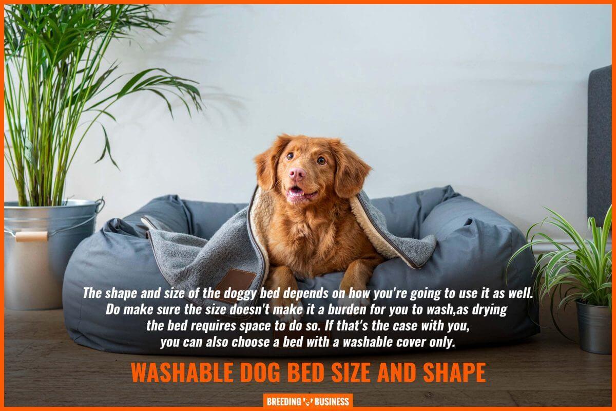 size and shape of washable dog beds