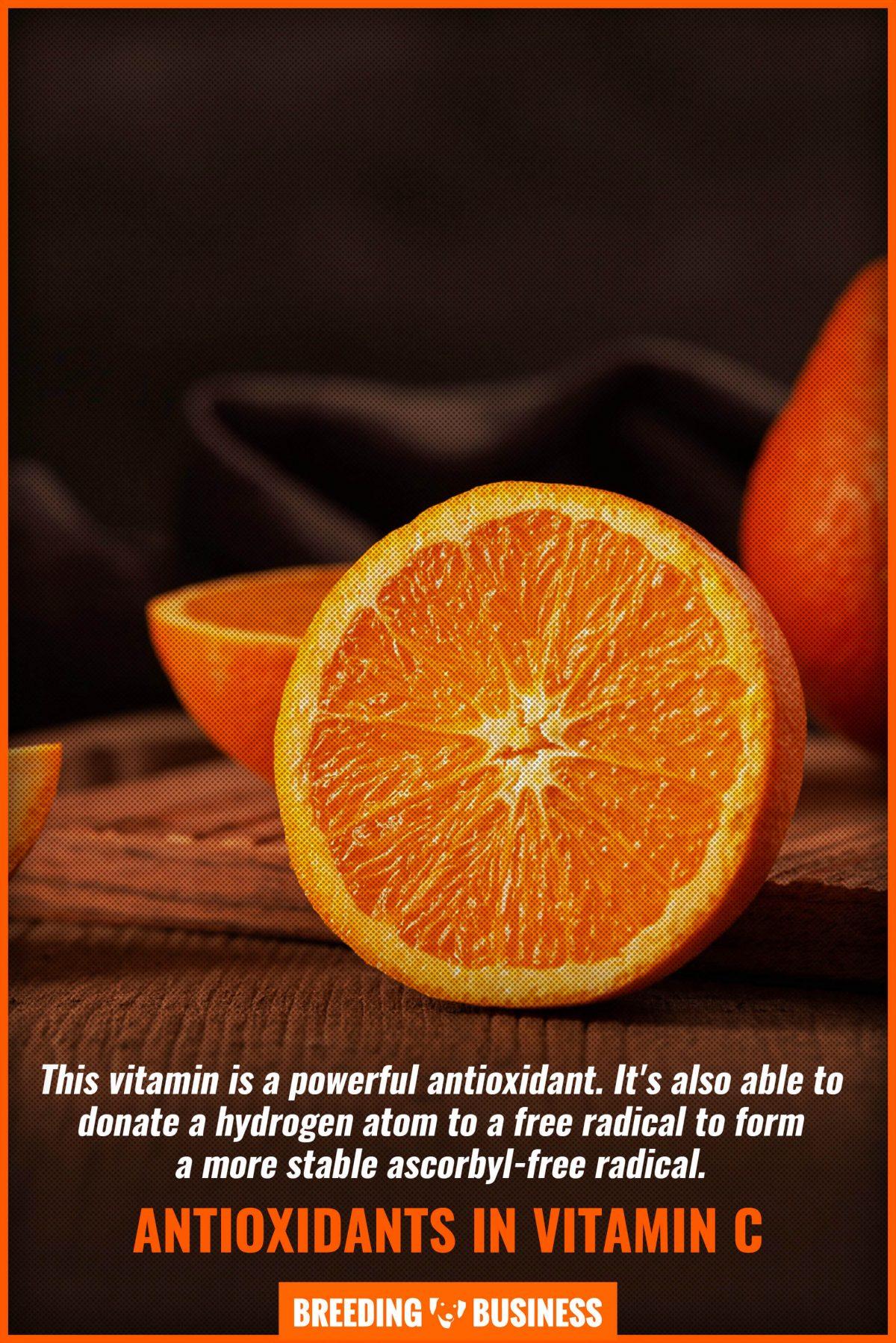 antioxidants in vitamin c
