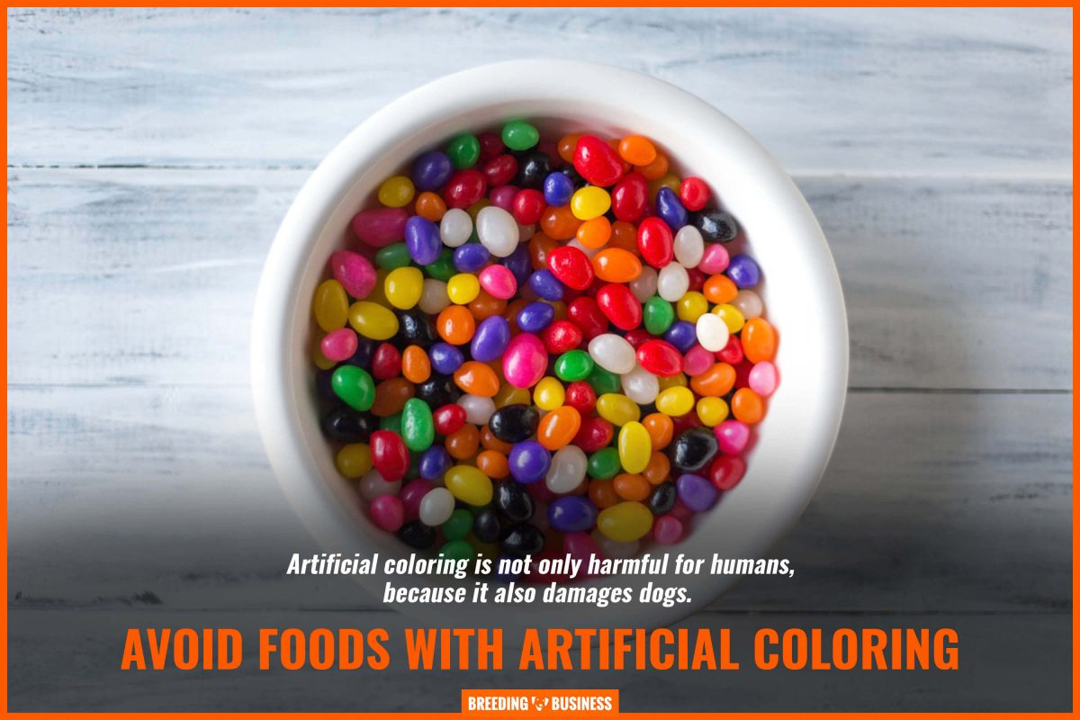 artificially colored food for dogs