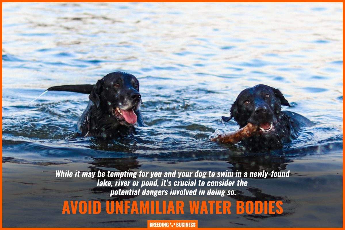 avoid unfamiliar water bodies