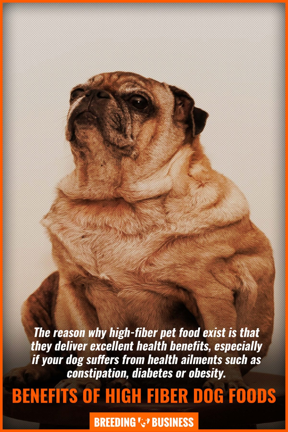 benefits of high fiber dog foods