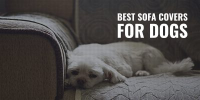 best sofa covers for dogs
