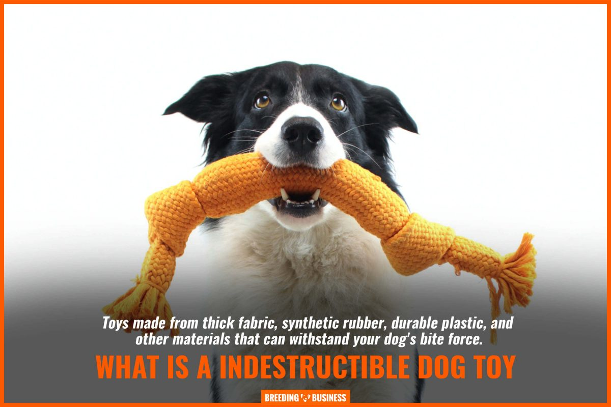 what is an indestructible dog toy